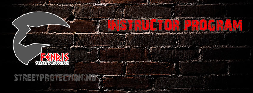 Facebook-top-FSP-Instructor-program